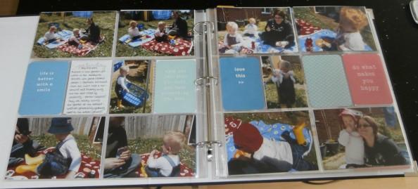 Project_life_picnic